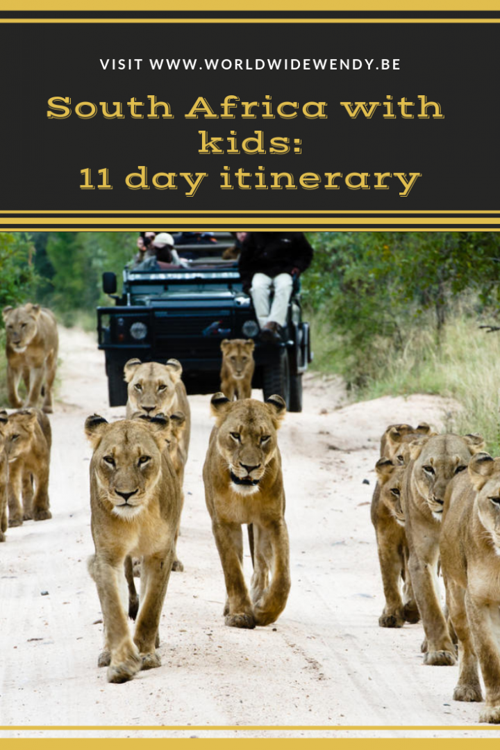 South Africa with kids: 11 day itinerary › WorldWideWendy
